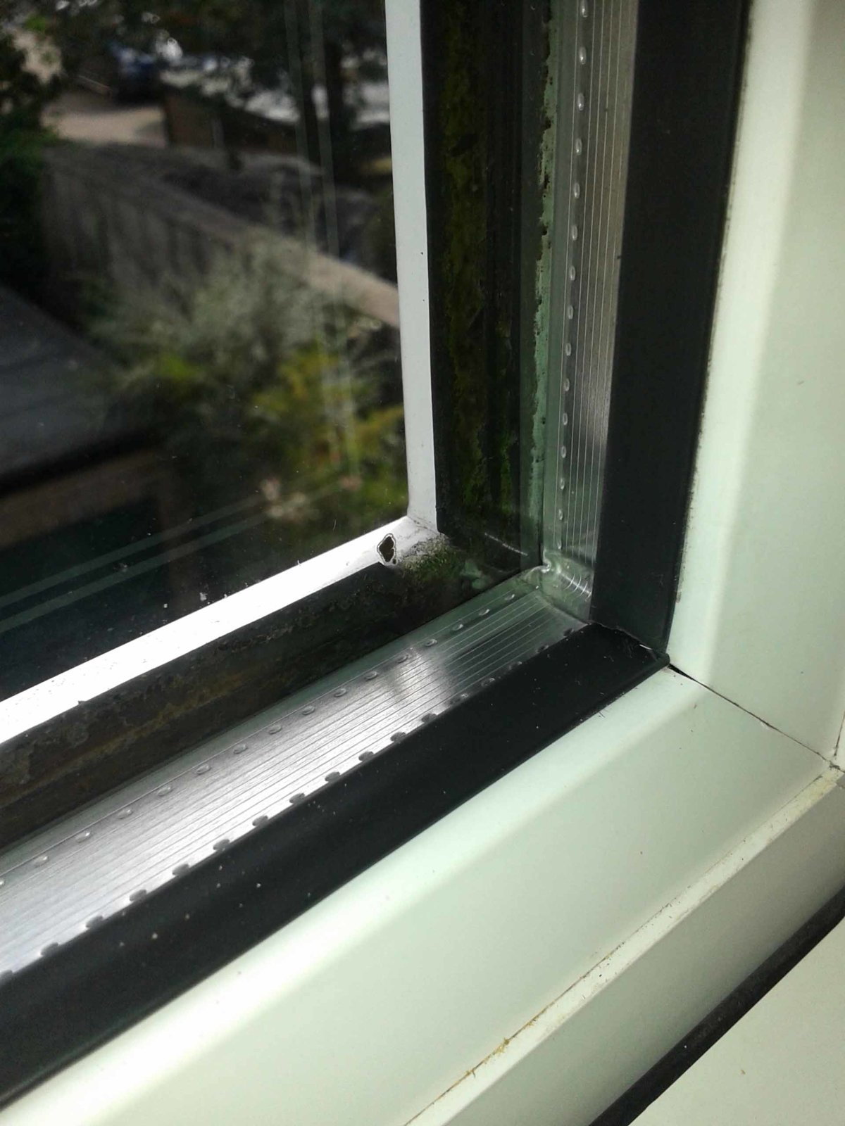 Replacing Sealed Units And Outside Seals On Upvc Windows