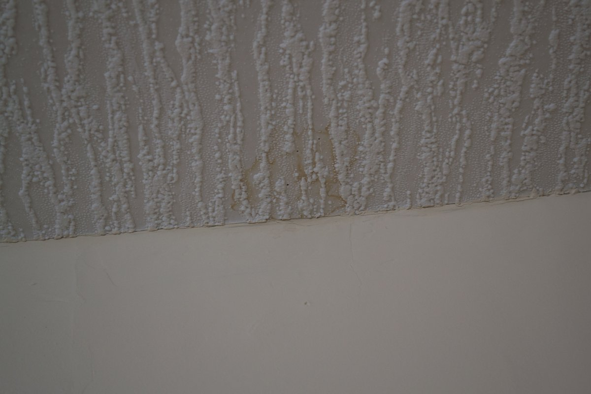 Advice On Flat Roof Leak And Damp Internal Walls Diynot