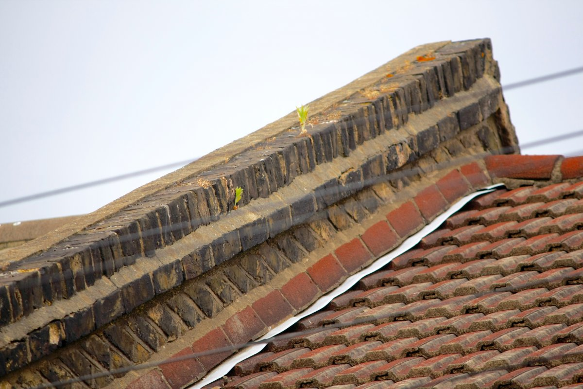 Reflashing Victorian Terrace And Repairing Brick On Edge