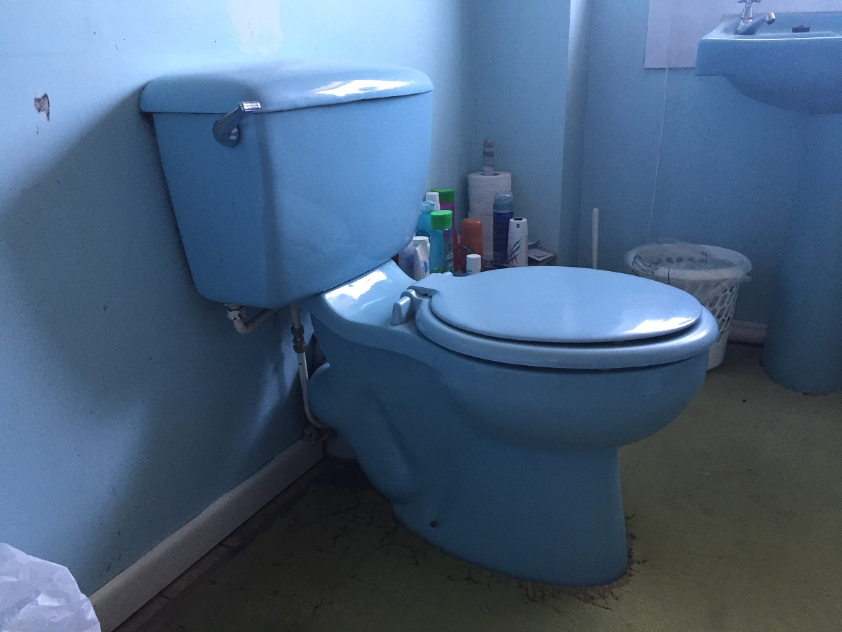 Whatever happened to those siphonic toilets? | DIYnot Forums