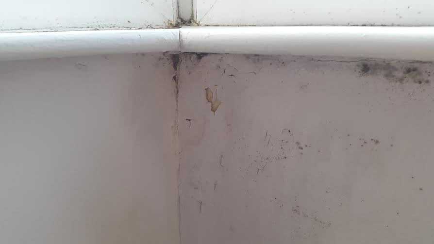 how to get rid of condensation damp on walls