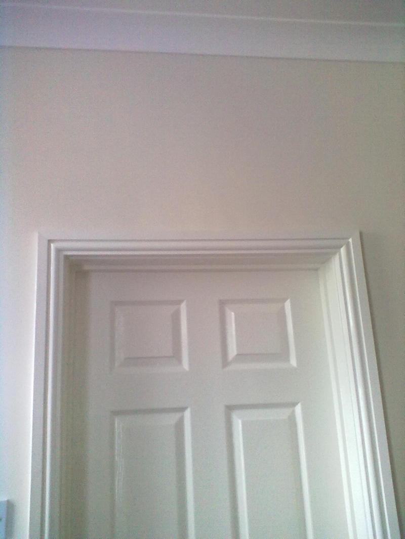 Dulux Stay White Gloss Paint