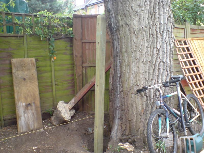 Fence Post Next To Large Tree Diynot Forums