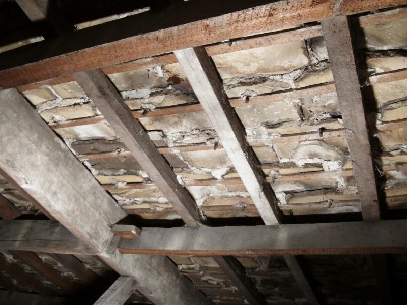 Stone Slate Roof Diynot Forums