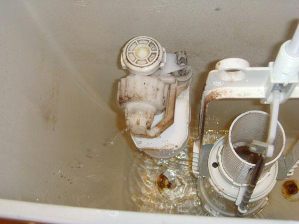 Toilet Slow To Fill Up Cistern After Flushing Diynot Forums