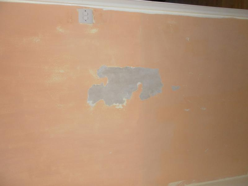 Now That I Have This Large Area Exposed Would Rather Remove All Of The Paint On Wall So Can Get A Nice Finish