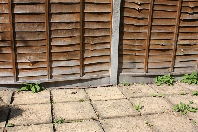 Hi Guys, I Need Some Advice On How To Adress Covering This Patio With  Decking. As You Can See From The Images, The Paving Slabs Are Very Un  Even.