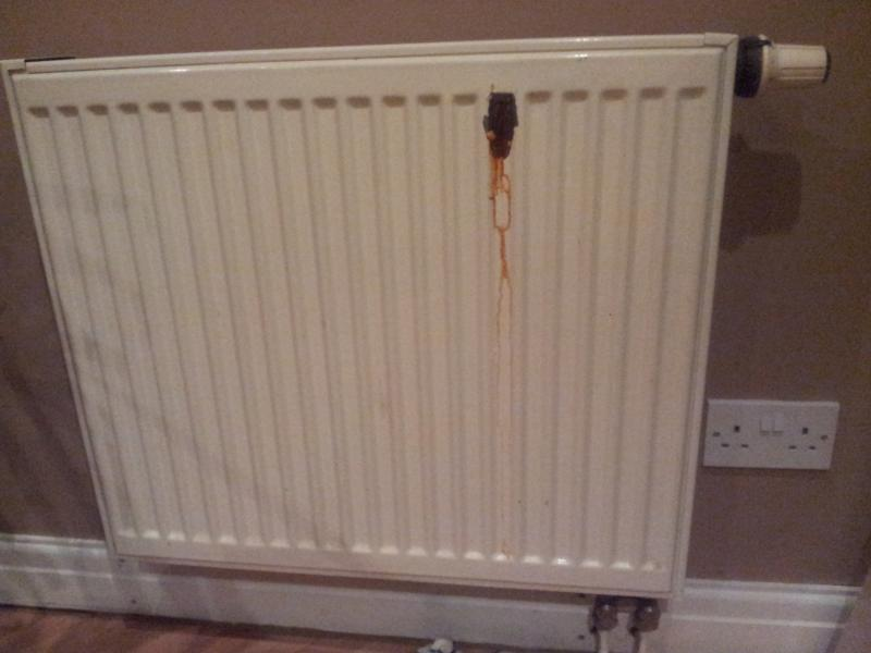 How To Replace A Radiator >> Radiator bottom right inlet outlet | DIYnot Forums