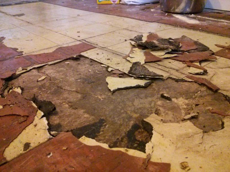 99 Asbestos Tile Removal Migrant Resource Network