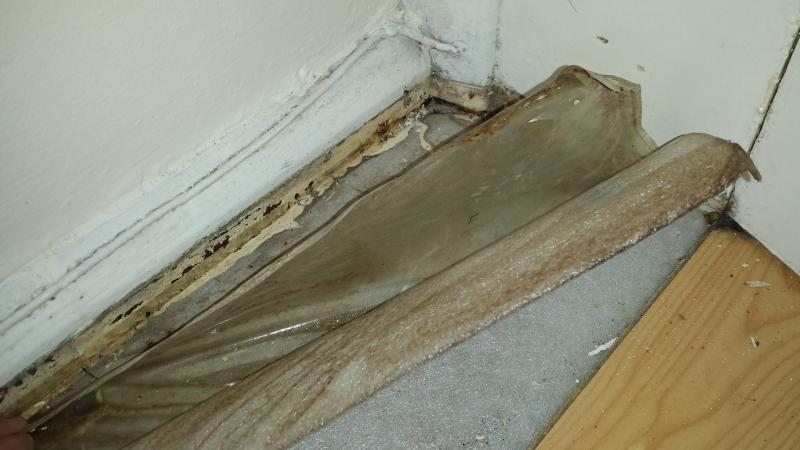 Laminate Flooring And Damp Issues Diynot Forums