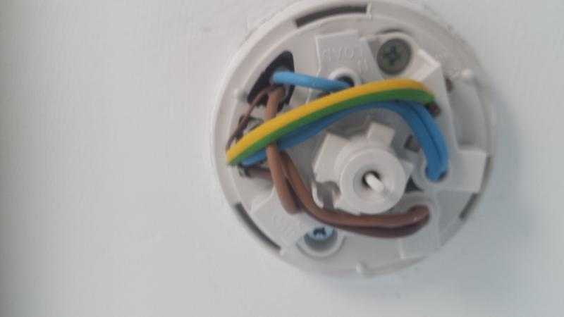 help identify pull cord ceiling rose in bathroom attached